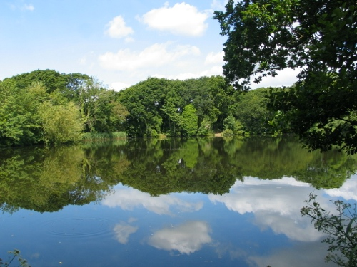 Brownwich Pond – Closed 23rd Eve to 24th Eve