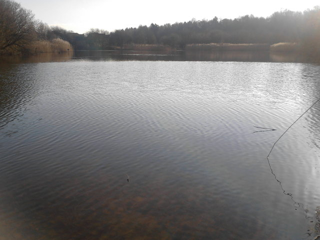 Funtley Pond Work Party – Tuesday 29th May 2018